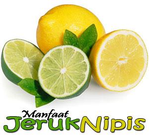 manfaat jeruk nipis