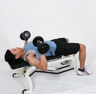 Latihan Untuk Membentuk Otot Dada