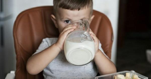manfaat susu dancow fortigro